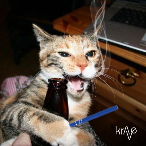 CatSmokingKrave
